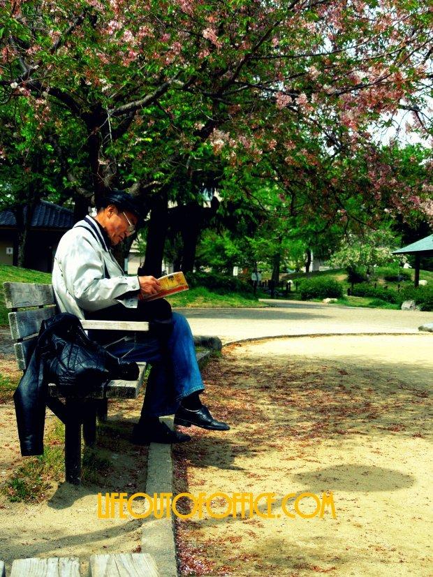 [Kyoto Local Park] Spring Reading